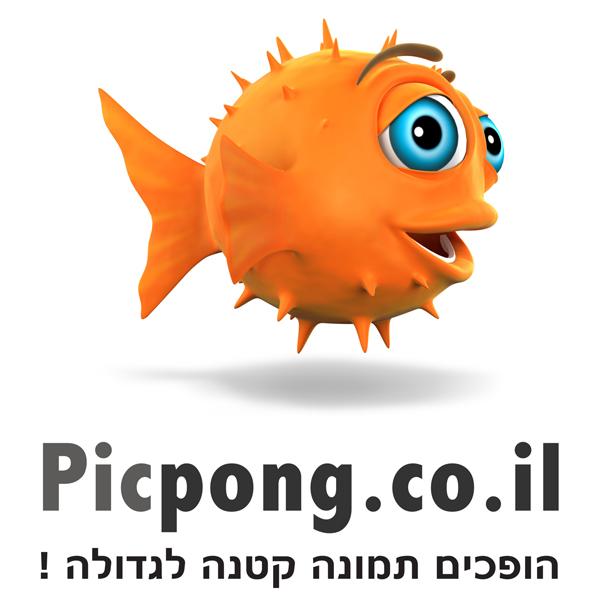 Picpong - הופכים תמונה קטנה לגדולה!