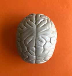 מוח יצירתי